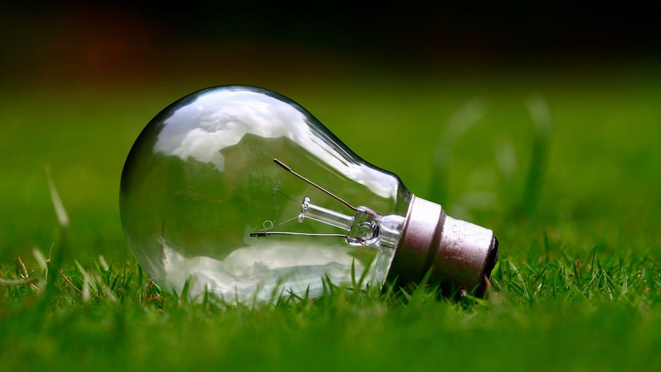 Green energy. Lightbulb on grass.